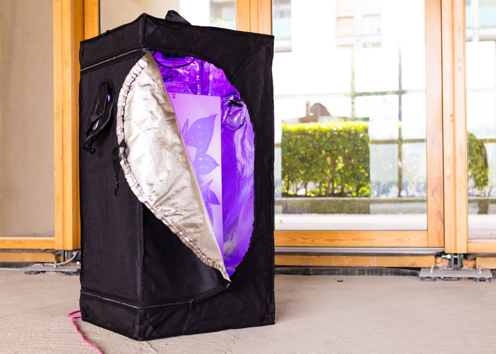 TROCHETIOPSIS ERYTHROXYLON (2017)_Grow tent, LED, laser etched acrylic, motor, pink fabric, cable [length may vary] 101 x 52 x 52 cm
