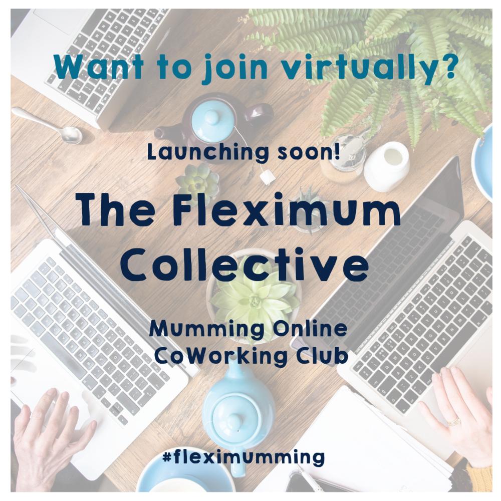 Copy of Fleximum collective.png