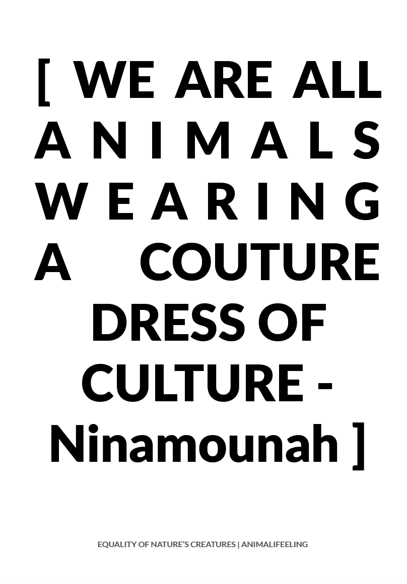 fashion movement p28.png