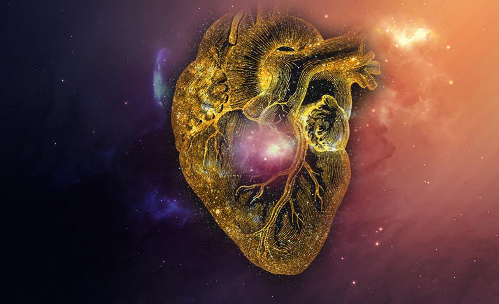 Herzübung - living compassion