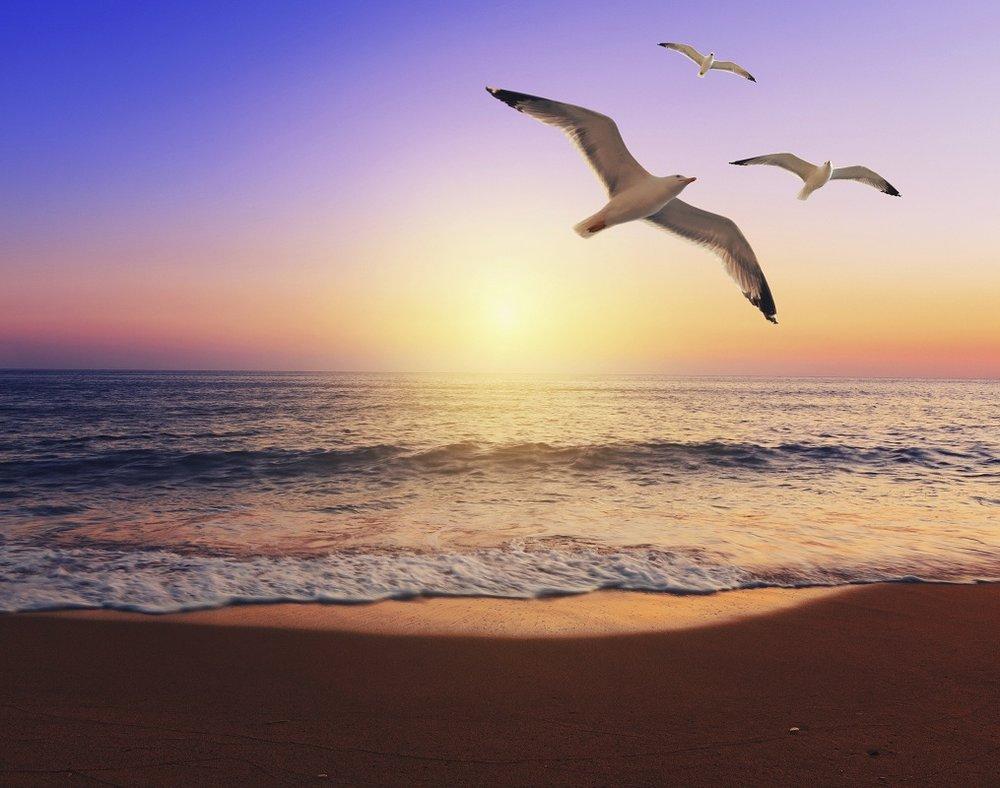 meditation-for-healing-the-heart-find-hop-1346268456.jpg