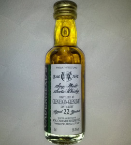 Glen Elgin - Glenlivet 1991 22 YO