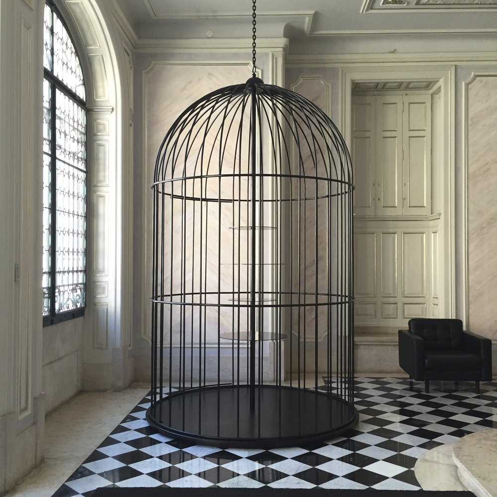 Aves Raras -