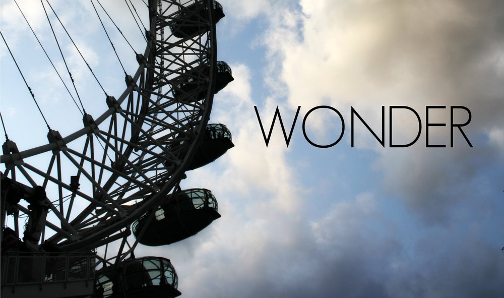 wonder-THUMB.jpg