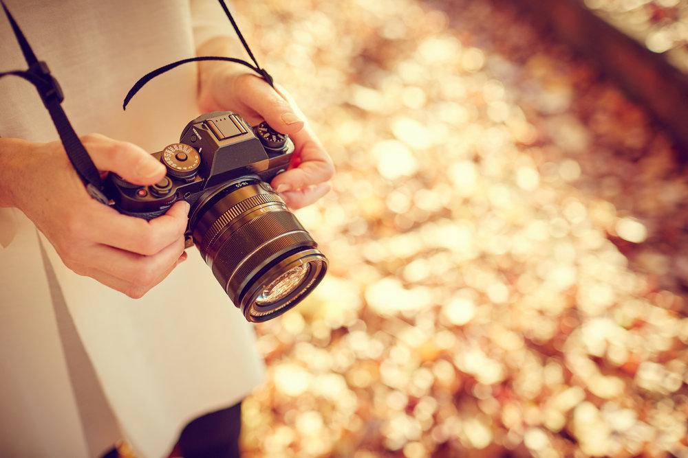 Dollarphotoclub_95374314.jpg
