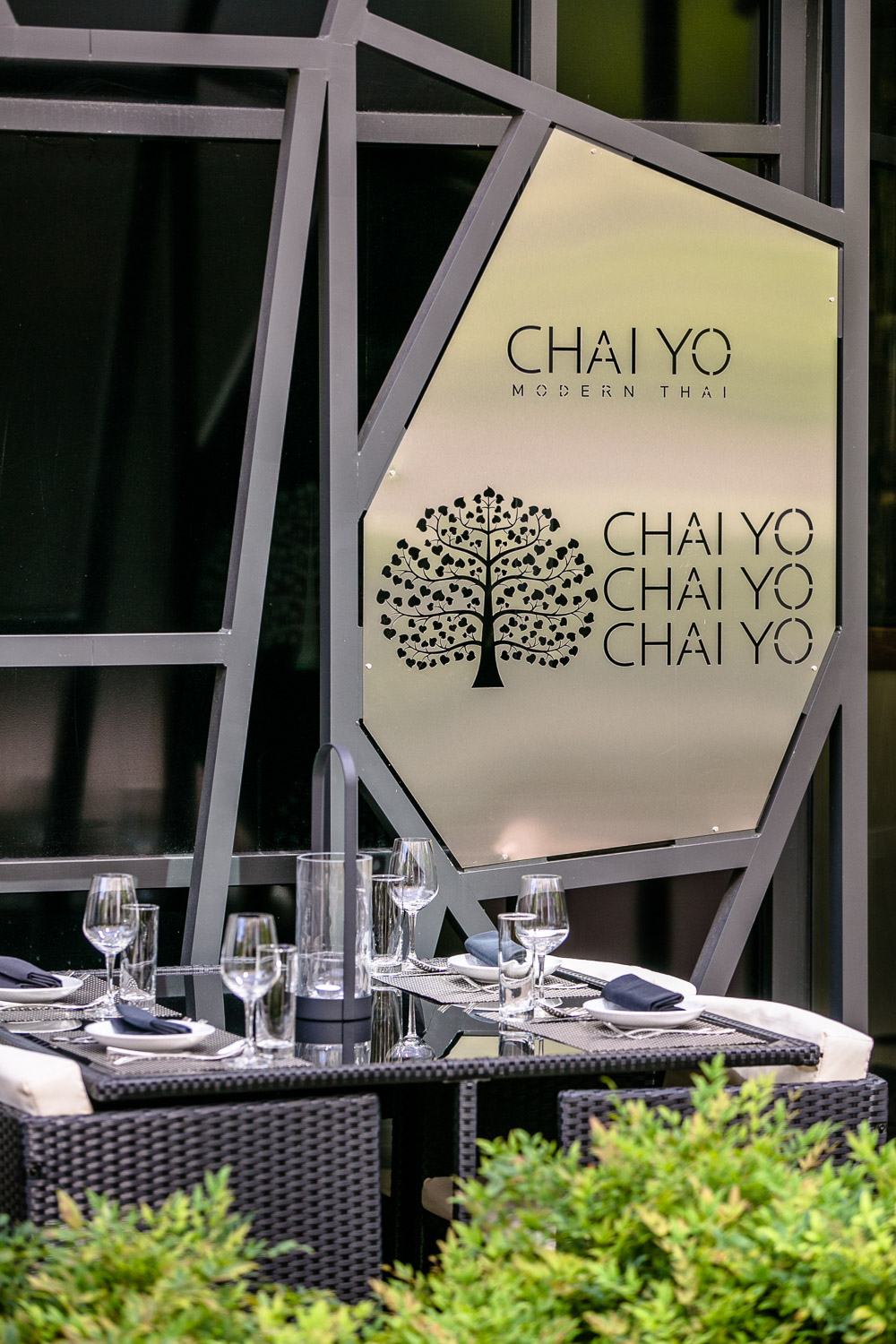 Chai-Yo-Sign-Erik-Meadows