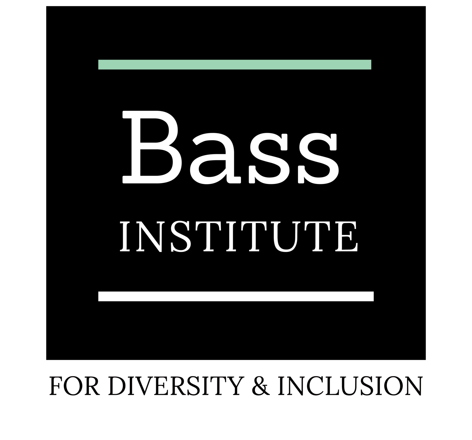 BASS INSTITUTE FOR DIVERSITY & INCLUSION