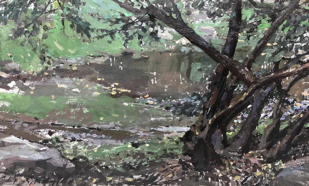 Caleb Stolzfus - Holcomb Gardens.jpg