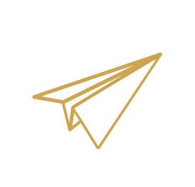 Plane_Lines_mustard_small.jpg