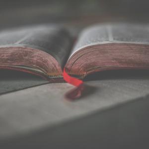 BIBLE STUDIESTUESDAYS 12PM &THURSDAYS 5:30PM -