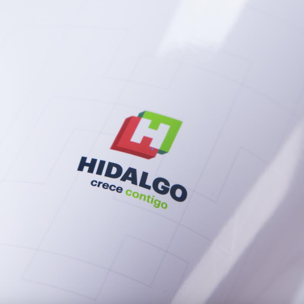 Government-Hidalgo