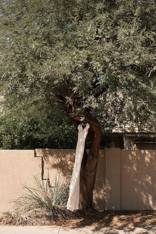 Abby_Andrew_Scottsdale_Arizona_Wedding_0830.jpg