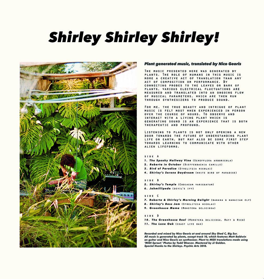shirley B*.jpg