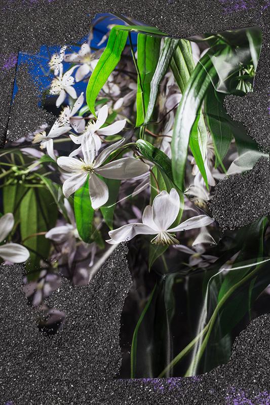 buried-blooms.jpg