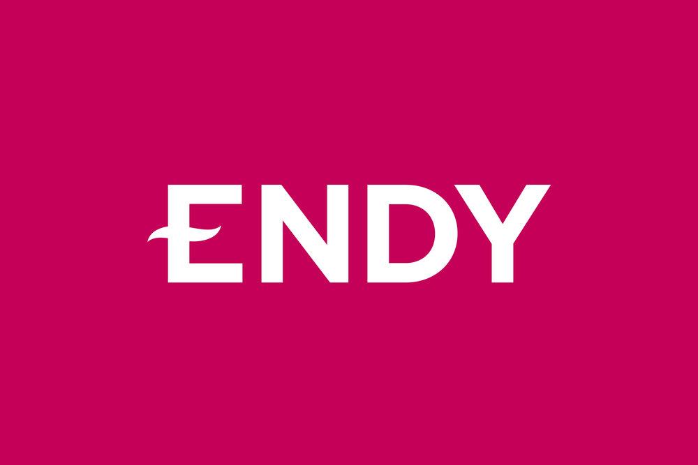 Endy-logo-THB.png