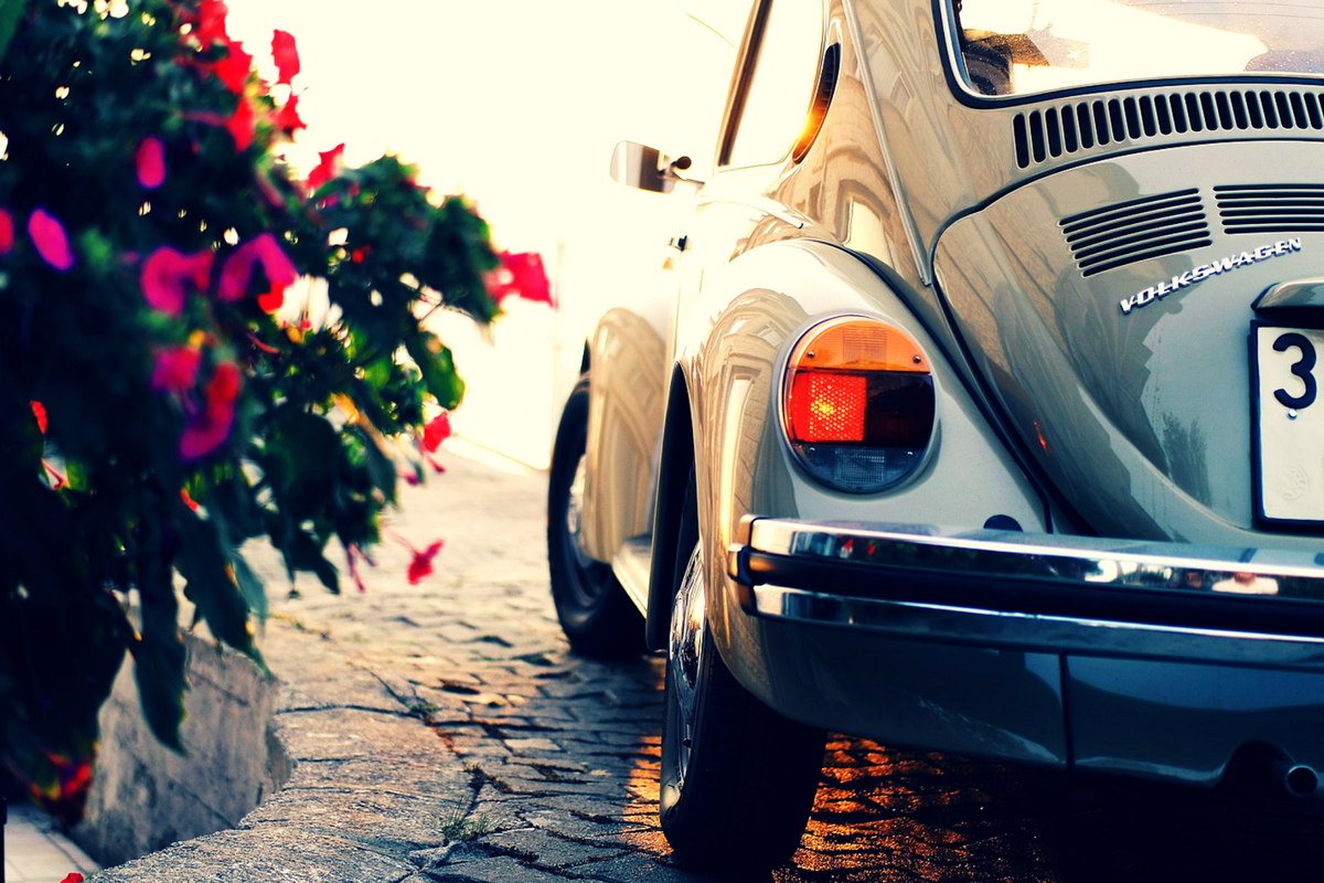 A Volkswagen Beetle near some flowers for the blog How We, As Leaders, Shape Our Company Culture