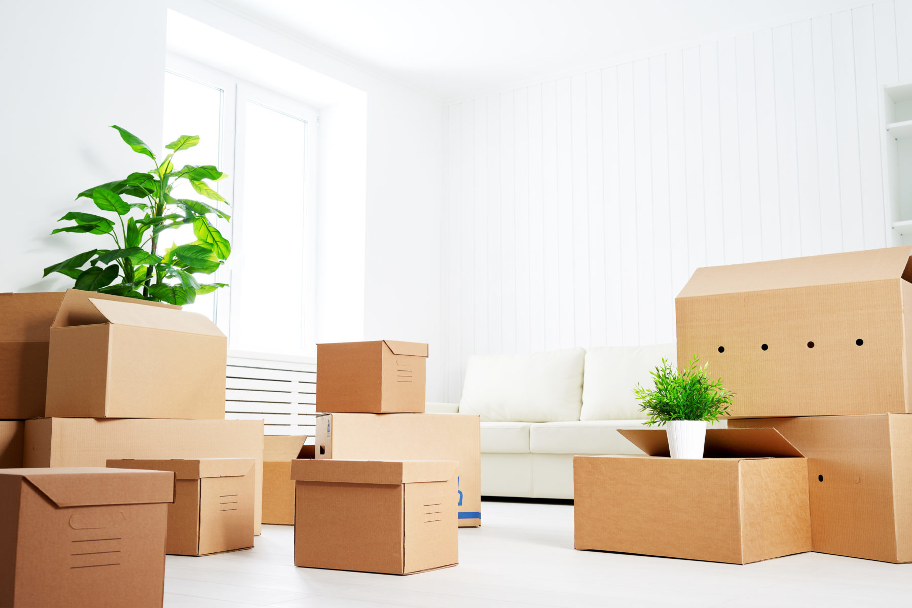 move. lots of cardboard boxes in an empty new apartment. For the blog How Do You React To Unexpected Setbacks?
