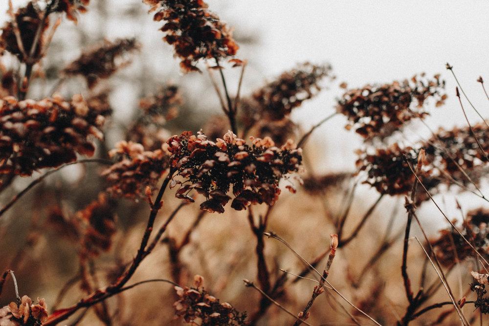 928bf-cincinnatiweddingphotographercincinnatiweddingphotographer.jpg