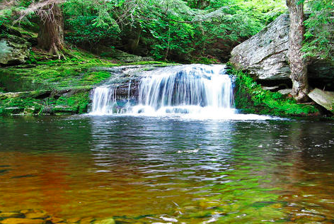 Vernooykill falls - Vernooy Falls Trail is a 3.3 mile moderately trafficked out and back trail located near Kerhonkson, New York that features a waterfall and is rated as moderate. The trail is primarily used for hiking, walking, nature trips, and birding and is best used from March until October. Dogs are also able to use this trail but must be kept on leash.