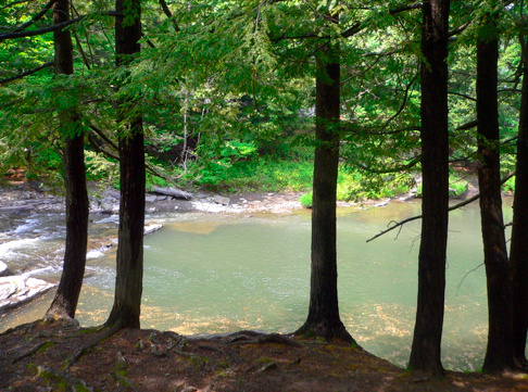 """The Millstream in the heart of woodstock - This swimming hole is right at the center of town. Down the road from the restaurant """"Joshua"""". There's no longer parking by the stream, you'll have to park in town and take a short walk."""