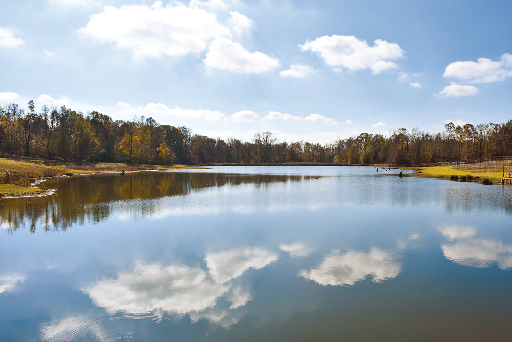 winery lake.jpg