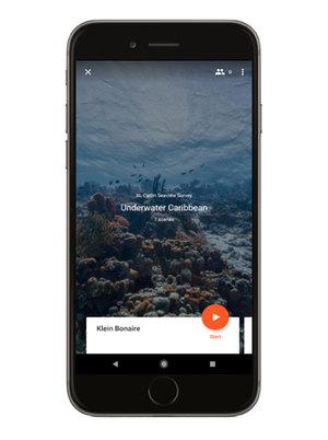 phone-carib.jpg