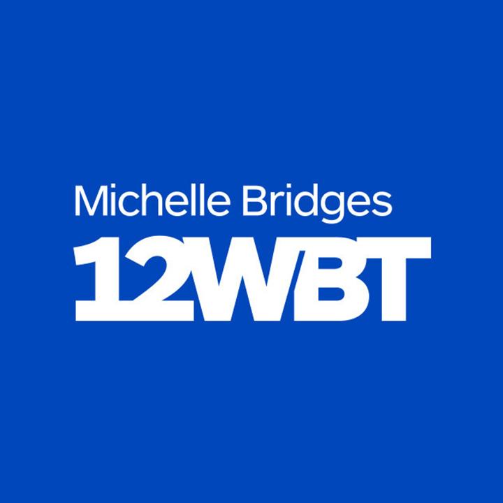 logo_michellebridges.jpg