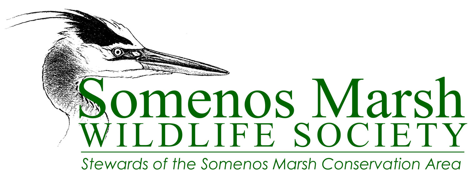 Somenos Marsh Wildlife Society