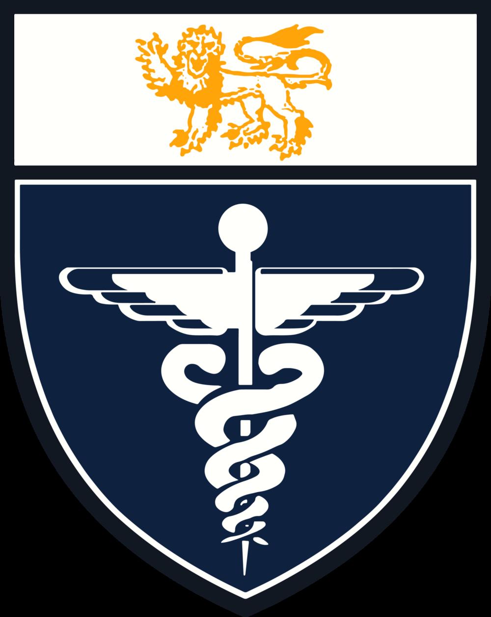 MedSoc.png