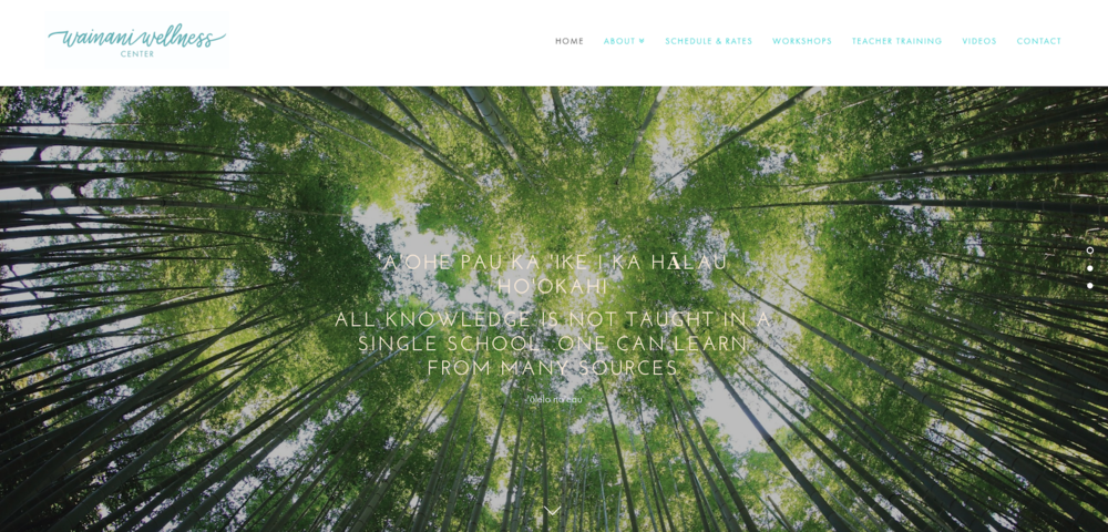 Wainani Wellness - Site Setup, Customization, Image Curation, Management, E-commerce