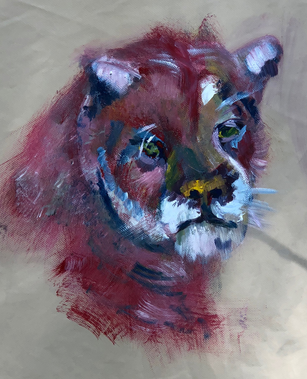 cougar1-rubylakeresort-kayompoyi.jpg