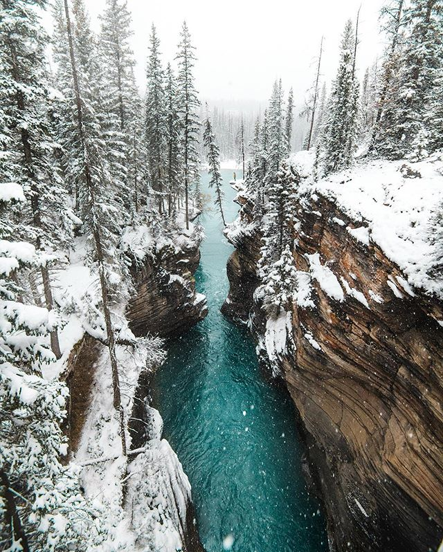 I had gone to the Canadian rockies for Autumn colours however the change of season with 36 hours of non stop snow had left one of the most magical winter wonderlands to explore ❄️💦 D850 | 16-35mm | 1/640 | F/4 | ISO 500