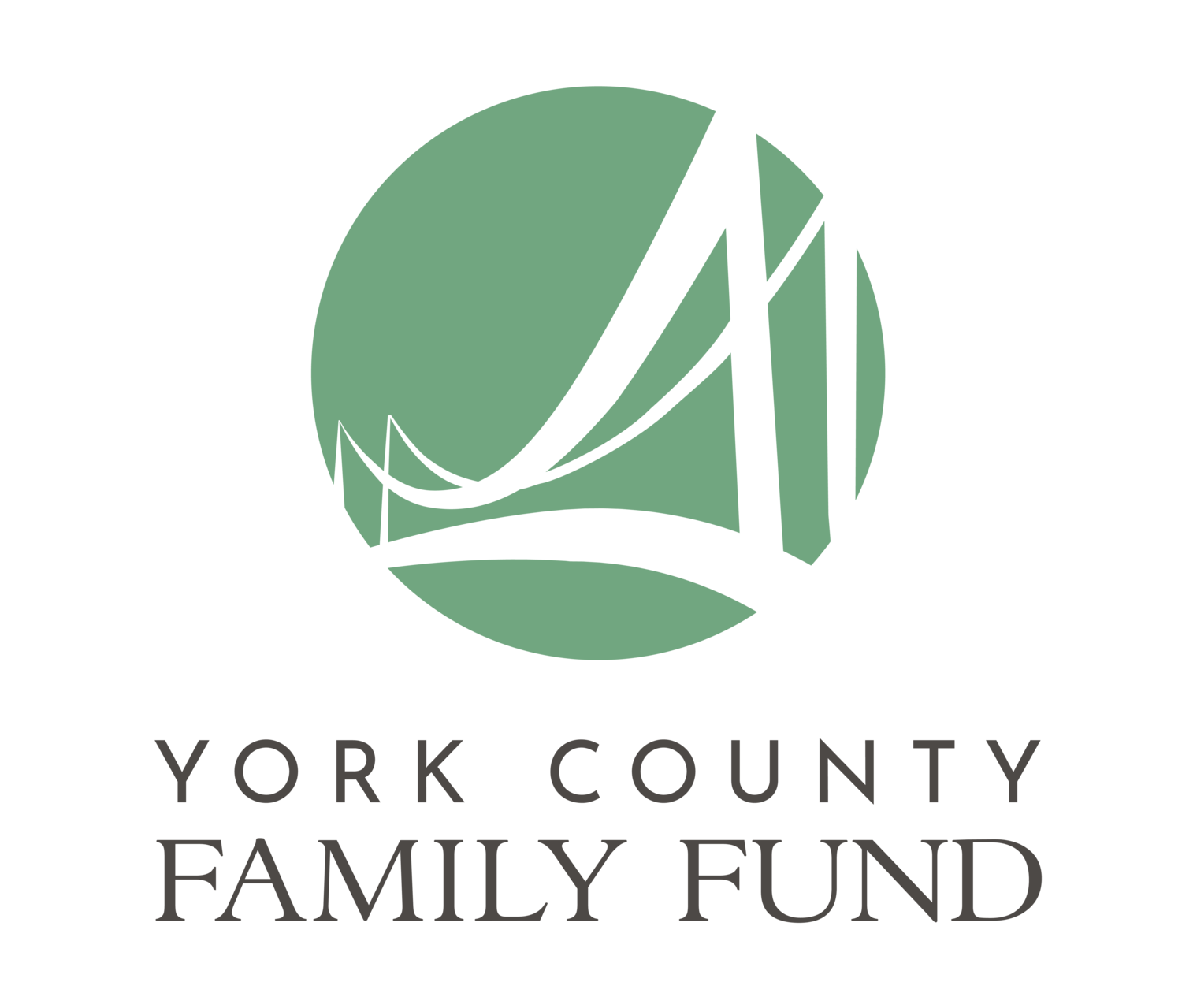 York County Family Fund