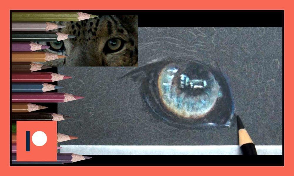 Snow Leopard - Part one.jpg