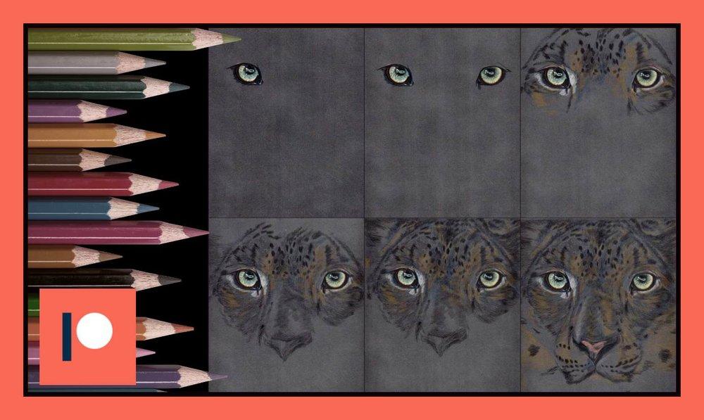 Snow Leopard - Part two.jpg