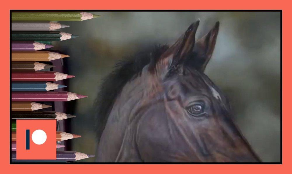Horse seven - Duration 17 mins.jpg