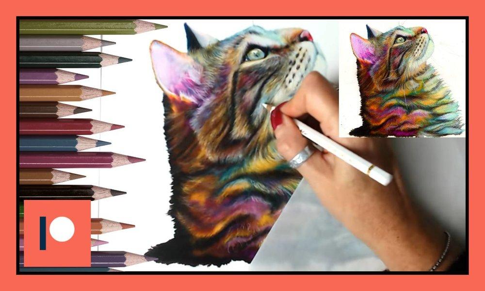 Inky cat 2.jpg
