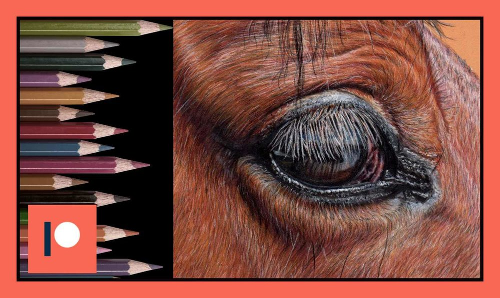 Horse eye - Part three.jpg