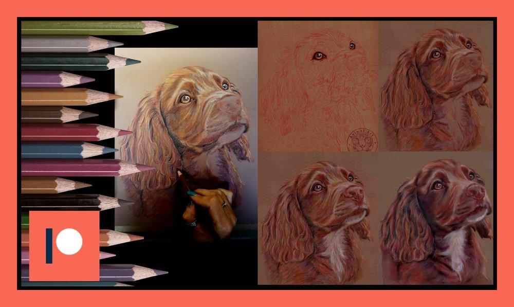 Mocha Pup - Duration 1 hr.jpg