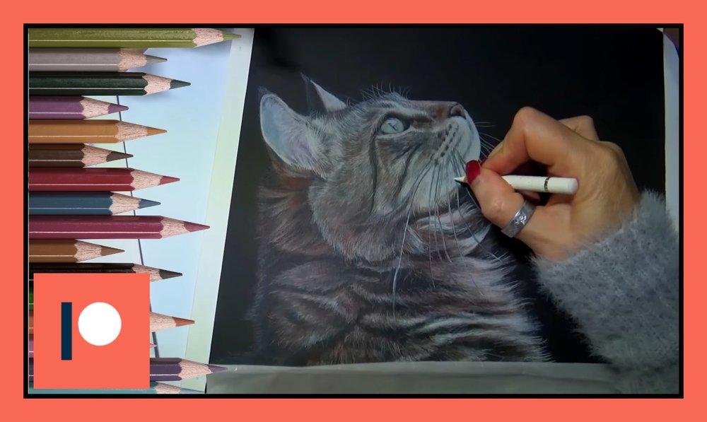 cat part 4.jpg
