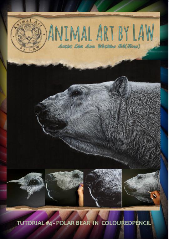 Polar Bear cover.PNG