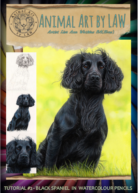Black Spaniel #2 cover.PNG