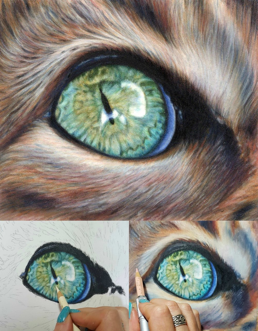 cat eye collage.jpg