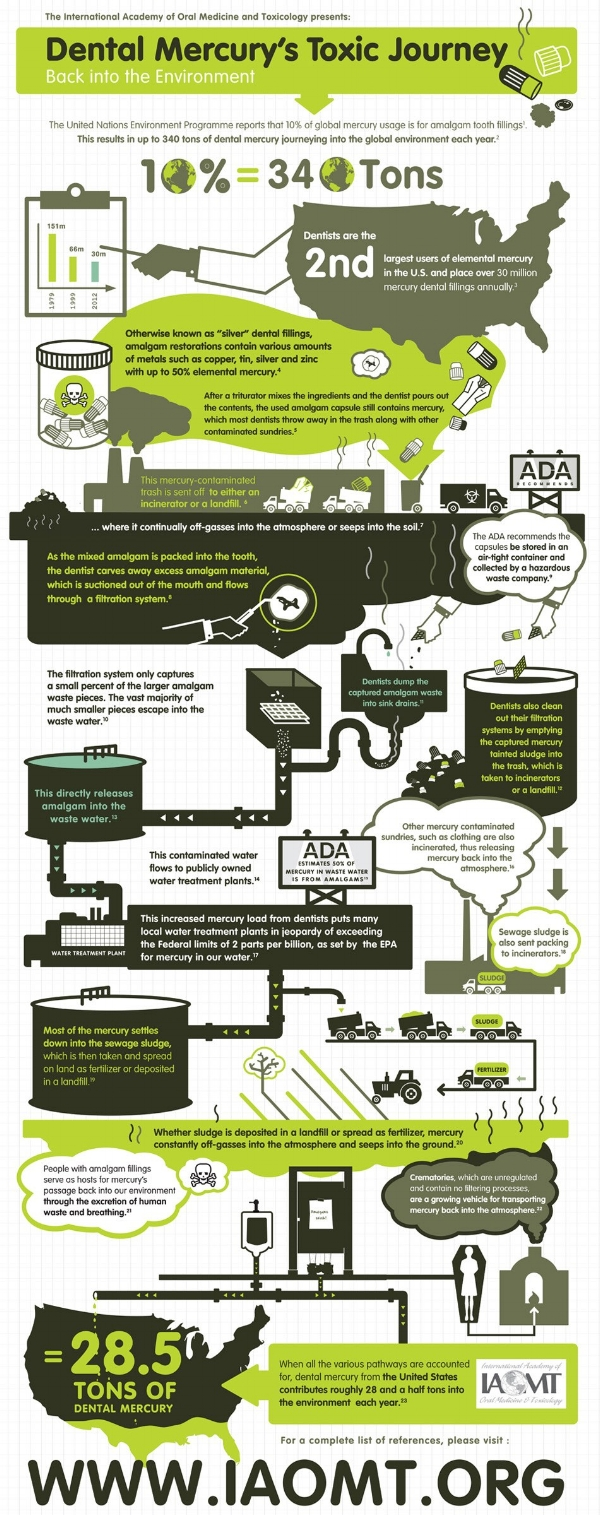 This graphic presents an overview of the many ways by which dentists contribute close to 30 tons of mercury into the United States environment each year. Photo: IAOMT.ORG