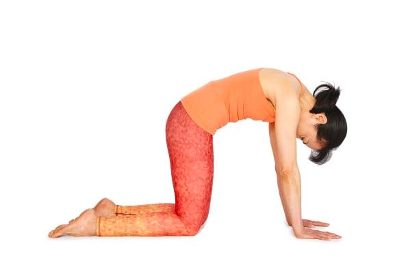 posture chat yoga