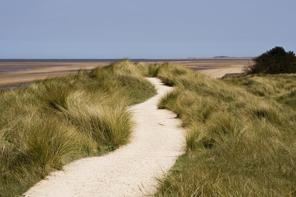 coast-path-Vaughan-Sam.jpg