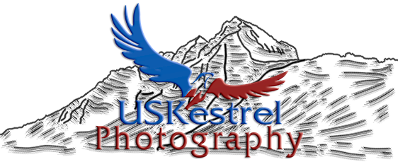 USKestrel Photography
