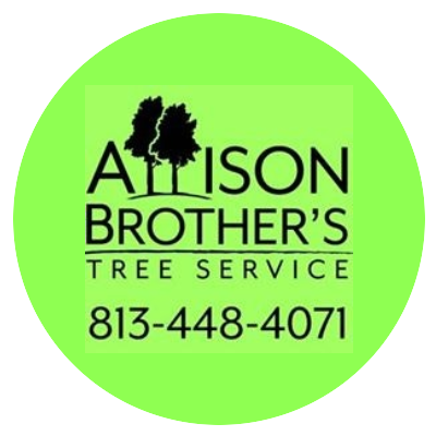 Allison Brother's Tree Service | Best Tree Removal Near Me - Dade City