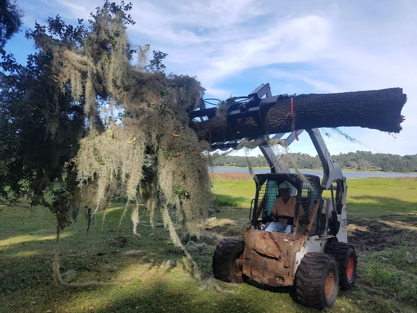 Professional Tree Services - family owned and operated