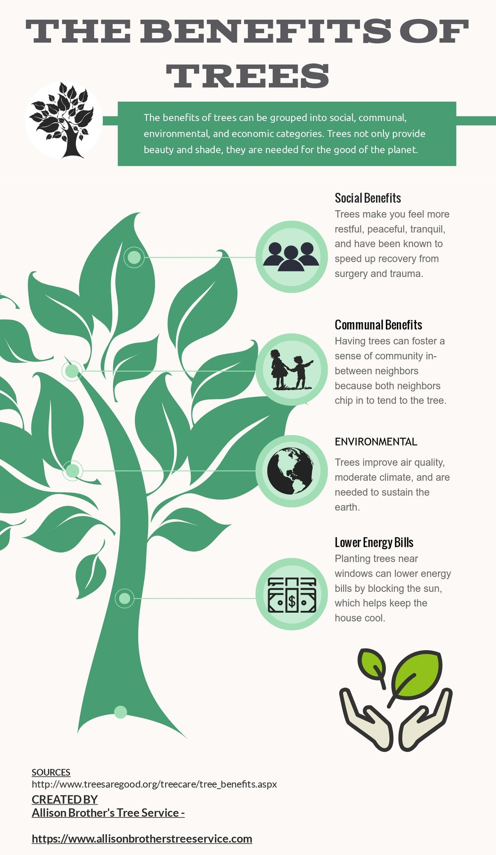 the benefits of trees.jpg
